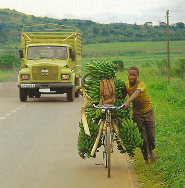 Pedals For Progress was founded by Dave Schweidenback who as s a Peace Corps volunteer in Ecuador, had seen the difference that a bicycle could make in someone's quality of life in a developing country.