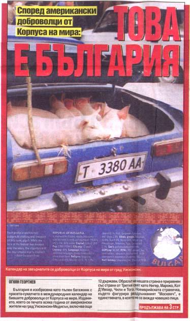Bulgaria pigs