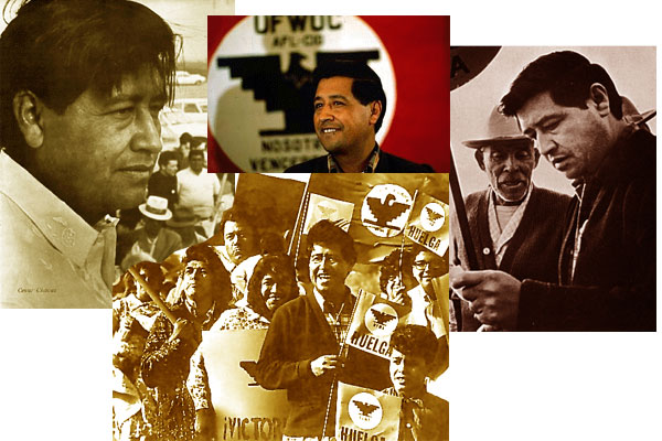 Fernando Chavez wrote of the time that his father explained to his family that President Johnson was offering to make Cesar Chavez the head of the Peace Corps in Latin America