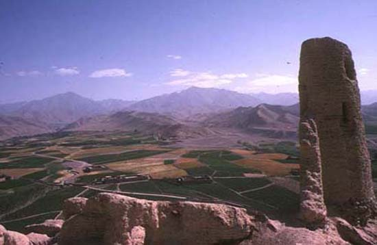 Afghanistan RPCV Branwen Adams-Denton works in Ancient Near Eastern Archaeology