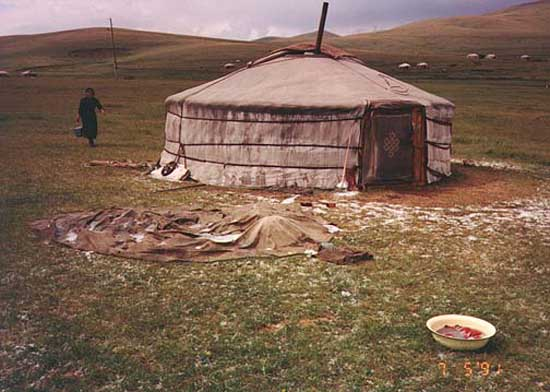 Carrie in Mongolia