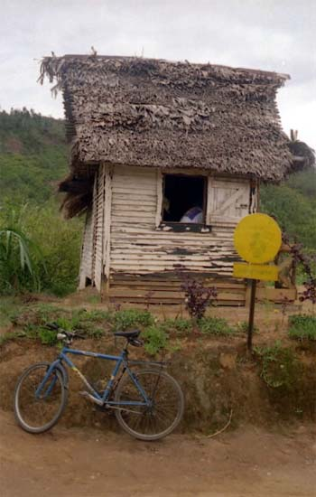 Madagascar PCV Margot Bonner writes: We're organizing the Bike and Rickshaw Race Against AIDS