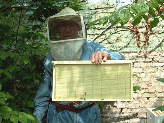 RPCV Sidney Glaser keeps bees