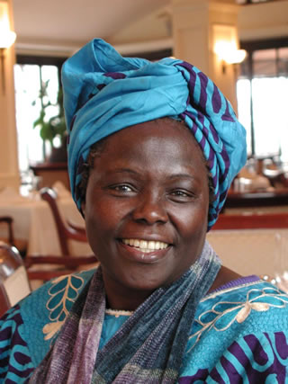 Nobel Peace laureate Prof Wangari Maathai meets with Peace Corps Country Director Robert Wurmsted to promote local biodiversity